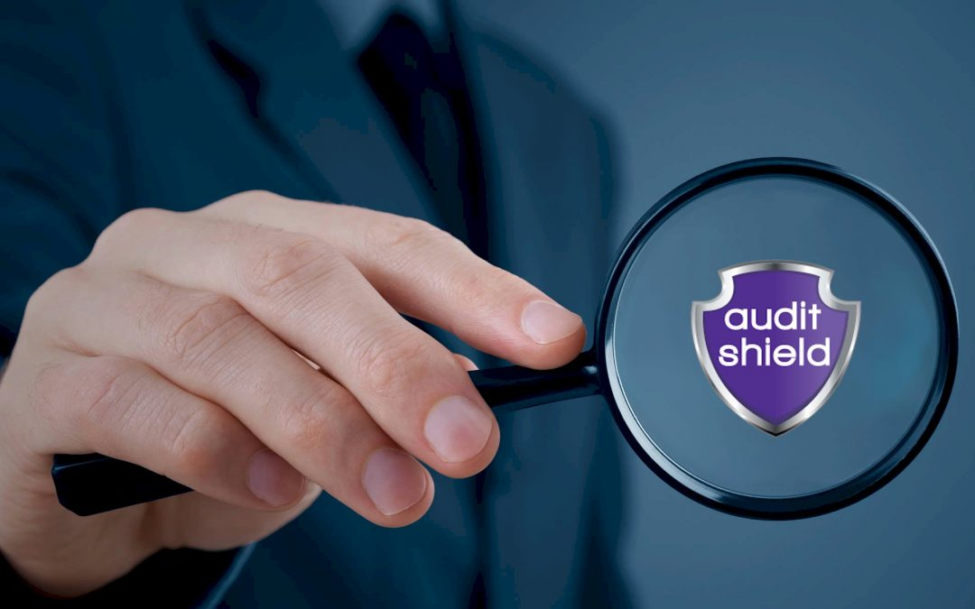 We are commencing a partnership with Audit Shield